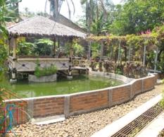 Mushola dan tempat belajar diatas kolam